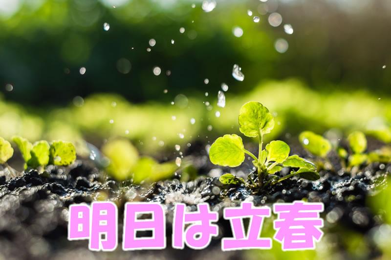 明日は立春です