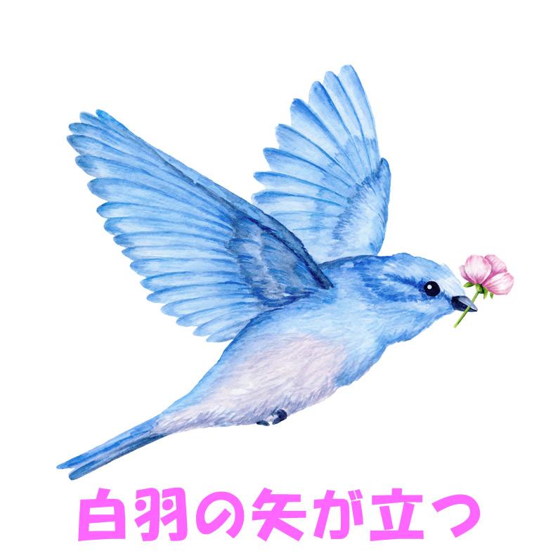白羽の矢が立つ