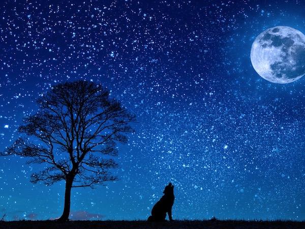 西洋占星術の満月が持つ意味とは