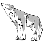 ウルフムーン(Wolf Moon)