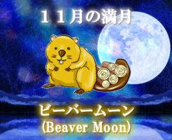 11月の満月「ビーバームーン(Beaver Moon)